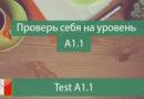 Livello A1.1 Test