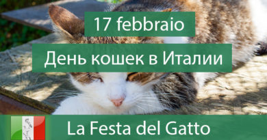 17 февраля — День кошек в Италии