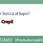 Buona fortuna? Good luck? НИ ПУХА, НИ ПЕРА! — К ЧЁРТУ!  по-итальянски ? / In bocca al lupo! — Crepi!