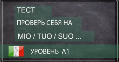 Прилагательные и притяжательные местоимения/I pronomi/gli aggettivi possessivi