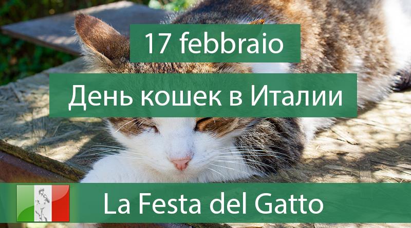 17 febbraio - La Festa del Gatto - Italiano ONLINE