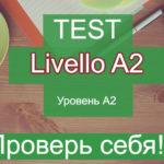 Тест. Уровень А2. Общий тест