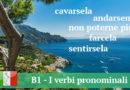 B1 — Test/I verbi pronominali